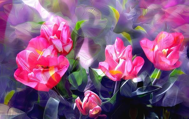 Фото обои линии, рендеринг, краски, тюльпан, лепестки