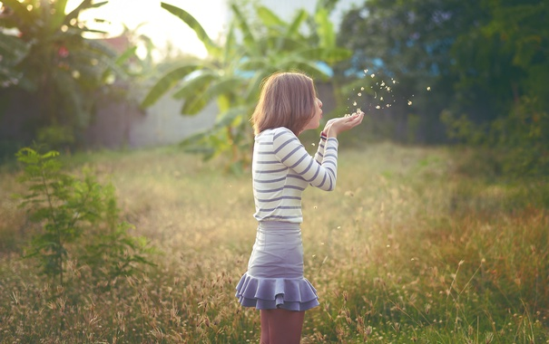 Фото обои лето, трава, девушка, лицо, волосы, руки, дуновение