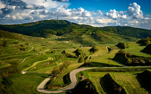 Фото обои дорога, зелень, облака, холмы, поля, Германия, плантации