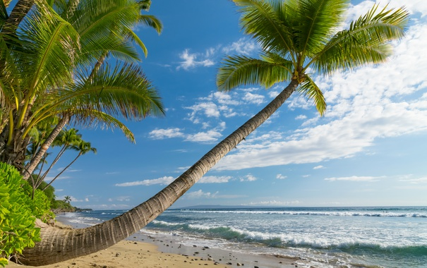 Фото обои песок, море, небо, облака, камни, берег, горизонт