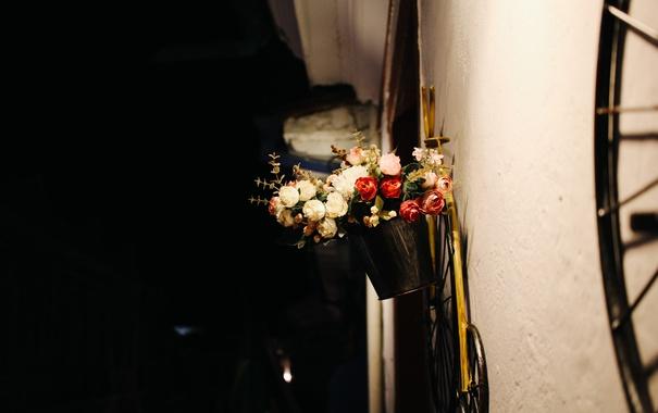 Фото обои цветы, стена, улица, розы, красные, белые