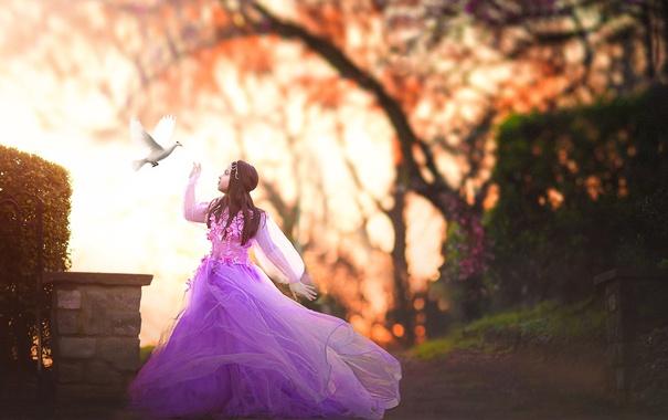 Фото обои голубь, платье, девочка, Flight of the Dove