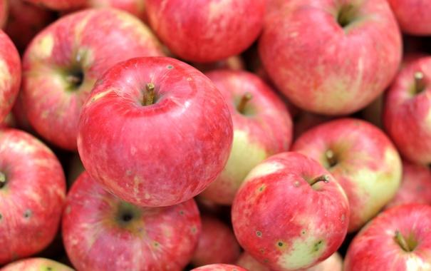 Фото обои макро, яблоки, плоды, фрукт