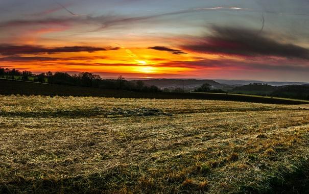 Фото обои поле, закат, природа
