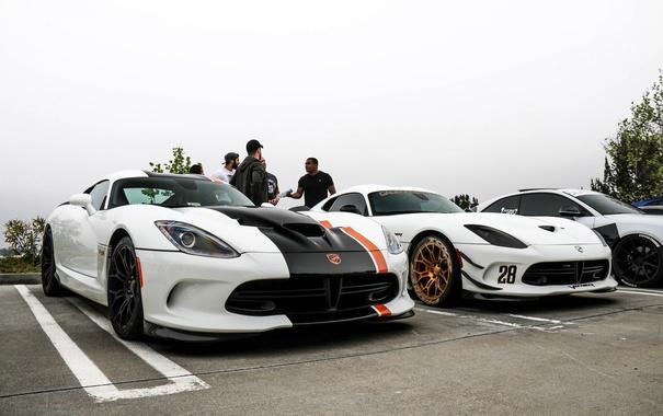 Фото обои Dodge, white, Viper, T/A