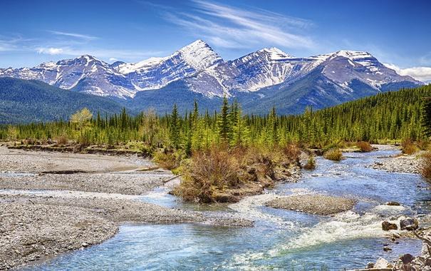 Фото обои лес, небо, деревья, горы, ручей, камни, голубое