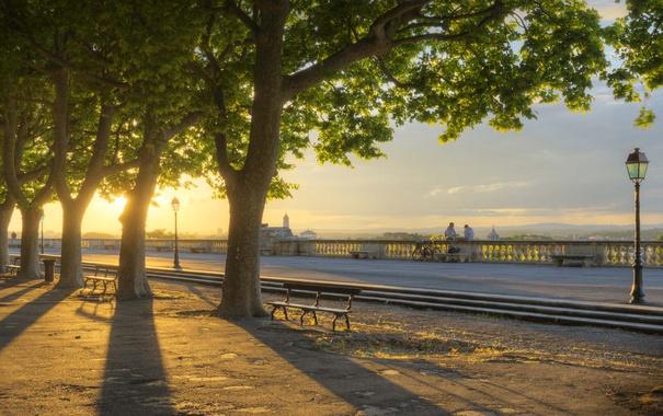 Фото обои деревья, закат, парк, Франция, аллея, Монпелье, Эро