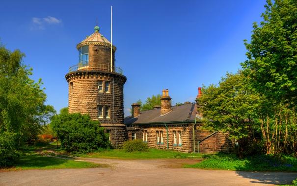 Фото обои зелень, лето, солнце, деревья, маяк, Англия, кусты