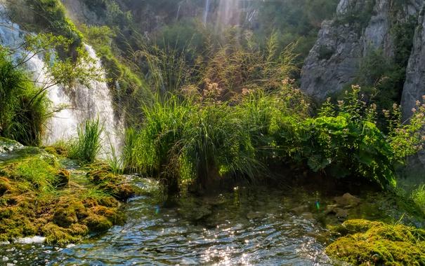 Фото обои трава, ручей, скалы, водопад, мох, солнечно, кусты
