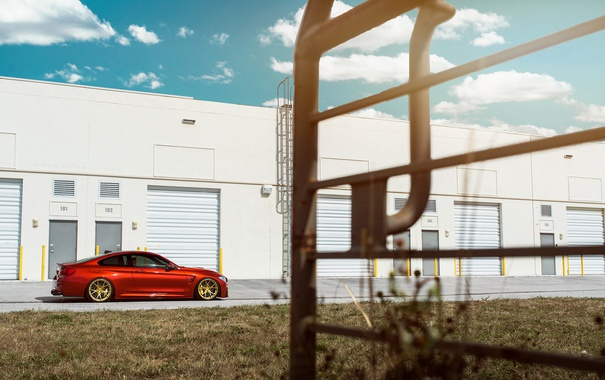 Фото обои BMW, Orange, Car, Sport, Wheels, F82, Rear