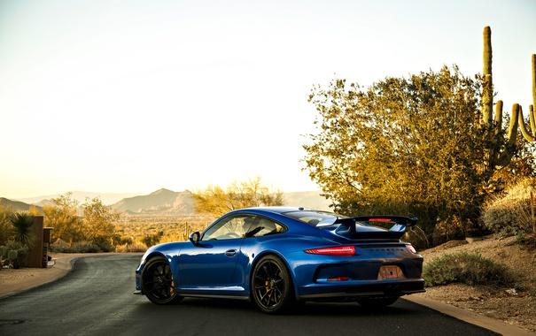 Фото обои Синий, Porsche, Автомобили, Black Edition, 2013, Сзади, Металлик