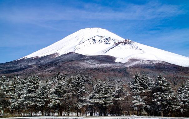 Фото обои деревья, пейзаж, гора, вулкан, Япония, Fuji