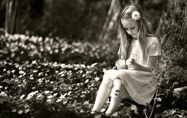 Фото обои лето, девочка, цветочки