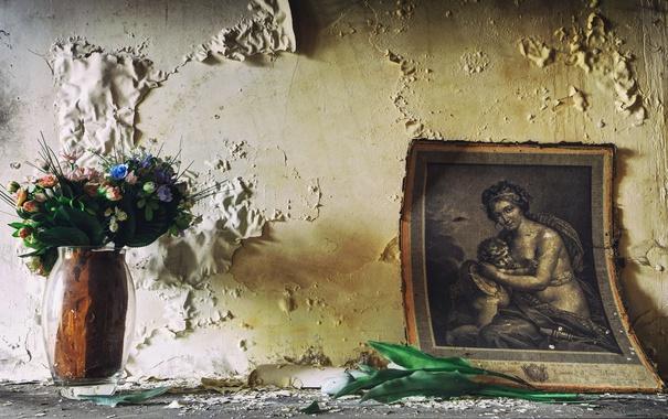 Фото обои цветы, фон, стена