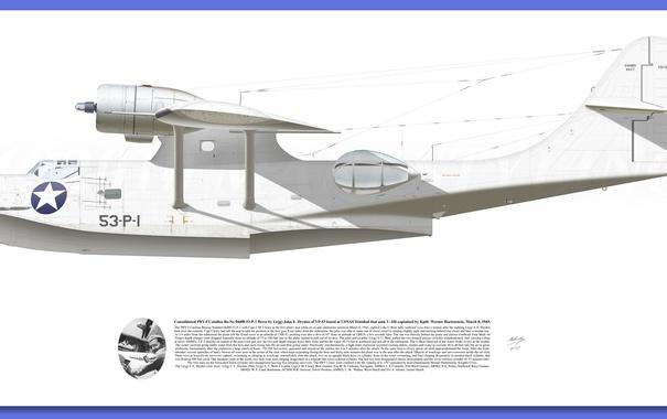 Фото обои white, Aircraft illustration, raf PBY Catalina