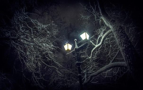 Фото обои снег, деревья, фонарь