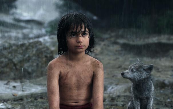 Фото обои мальчик, волчонок, Маугли, The Jungle Book, Книга джунглей