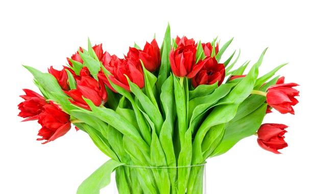 Фото обои ваза, лепестки, тюльпаны, букет, листья