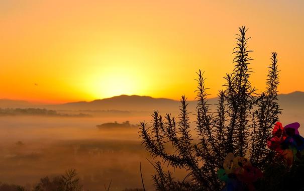 Фото обои трава, закат, горы, горизонт, силуэт, зарево