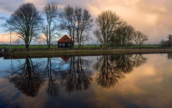 Фото обои поле, деревья, дом, отражение, река, вечер, Нидерланды