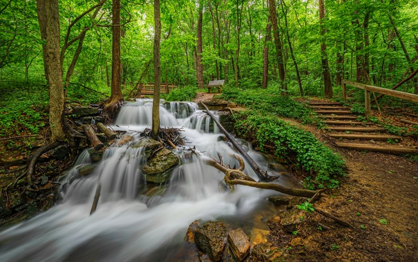 Фото обои парк, лестница, водопад, деревья, Missouri, зелень, лавочка