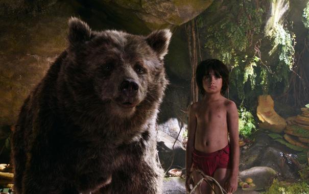 Фото обои друг, мальчик, медведь, Балу, Маугли, The Jungle Book, Книга джунглей