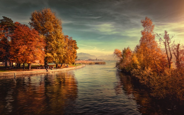Фото обои деревья, пейзаж, горы, озеро, парк, Швейцария