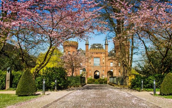 Фото обои деревья, дизайн, замок, забор, Германия, сад, дорожка