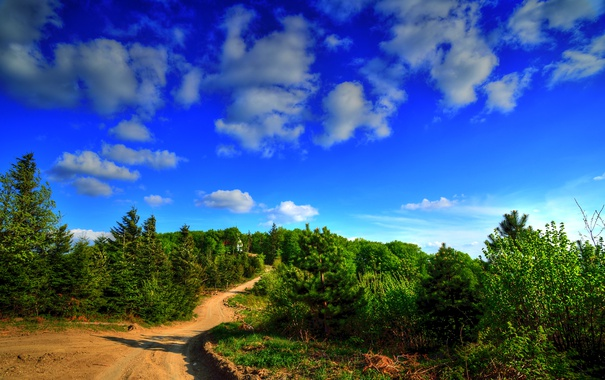 Фото обои дорога, зелень, лето, небо, солнце, облака, деревья