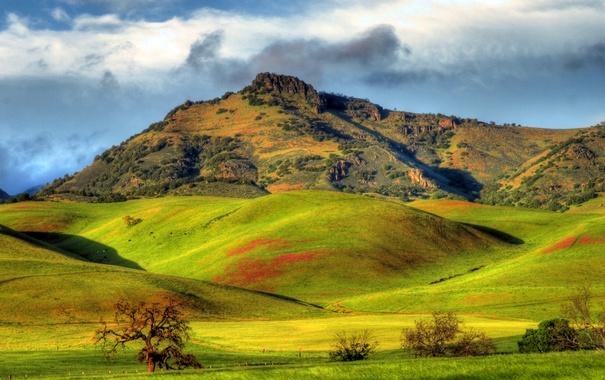 Фото обои зелень, солнце, облака, горы, холмы, поля, Калифорния