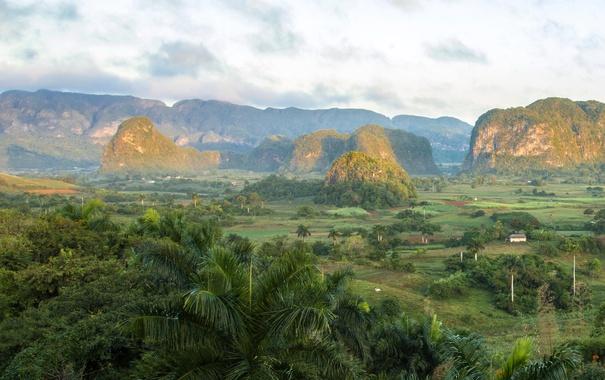 Фото обои горы, пальмы, поля, Куба, Vinales, Pinar del Rio