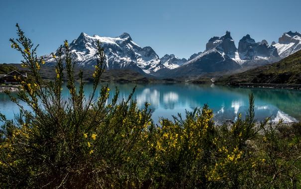 Фото обои горы, озеро, дом, берег, кусты, Чили