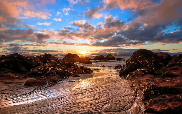 Фото обои море, камни, рассвет, солнце, небо, берег, облака