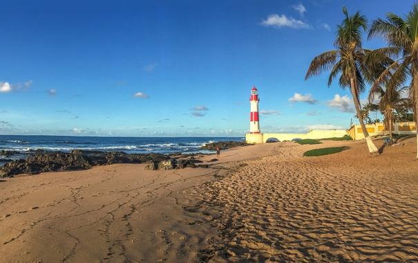 Фото обои песок, море, пляж, небо, солнце, камни, пальмы