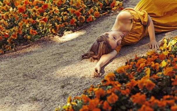 Фото обои девушка, цветы, лицо, волосы, платье, дорожка, лежит