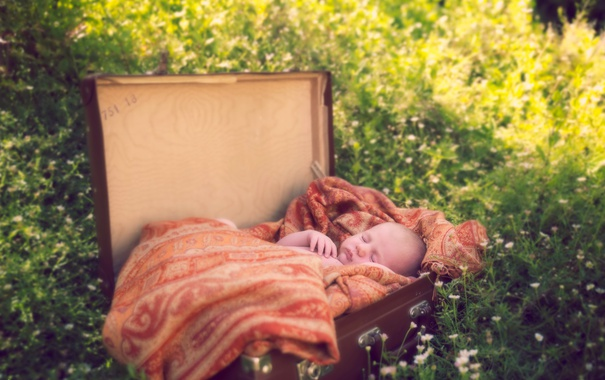 Фото обои фон, чемодан, младенец