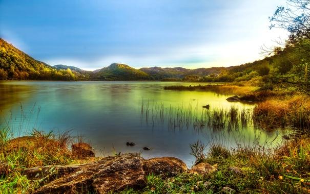 Фото обои деревья, горы, озеро, камыши, камни, обработка, Норвегия