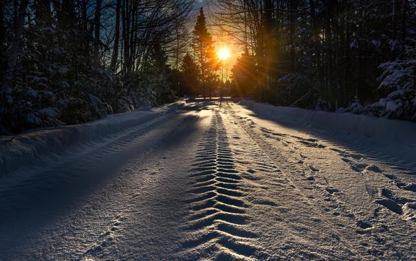 Фото обои зима, дорога, снег, утро