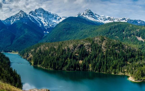 Фото обои лес, небо, облака, деревья, горы, озеро, США