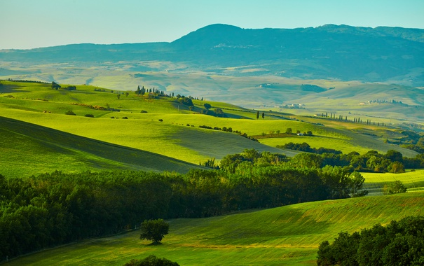 Фото обои зелень, трава, деревья, горы, поля, Италия, панорама