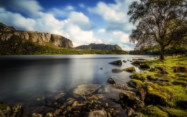 Фото обои лес, трава, деревья, горы, река, камни, берег
