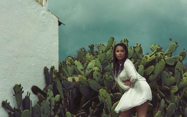 Фото обои взгляд, девушка, лицо, ветер, волосы, платье, кактусы