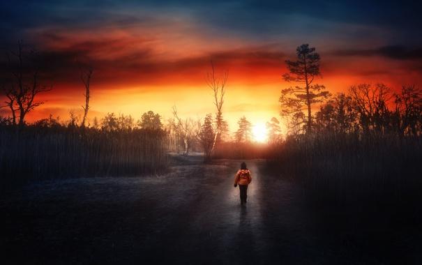 Фото обои дорога, небо, ночь