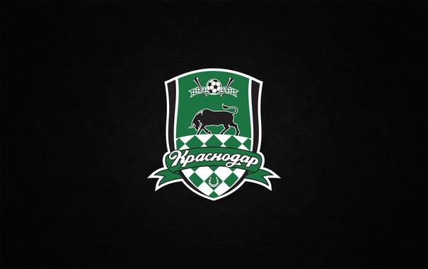 Фото обои футбольный клуб, Быки, горожане, Краснодар, чёрные буйволы