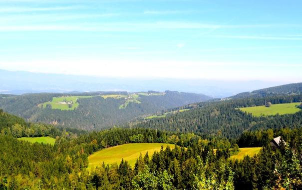 Фото обои лес, деревья, горы, поля, Австрия, домики, луга