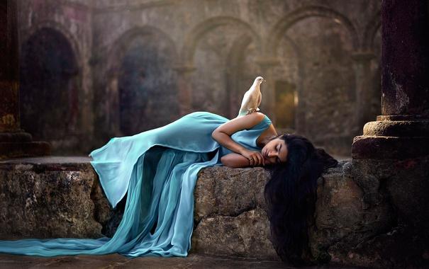 Фото обои голубь, девушка, сон, птица