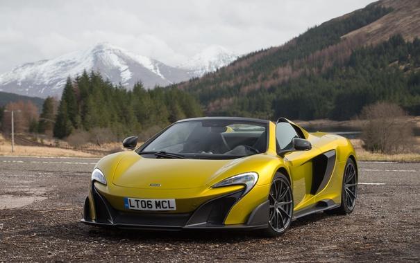 Фото обои McLaren, суперкар, макларен, Spider, 675LT