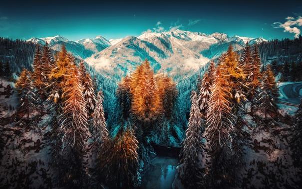Фото обои зима, снег, деревья, горы