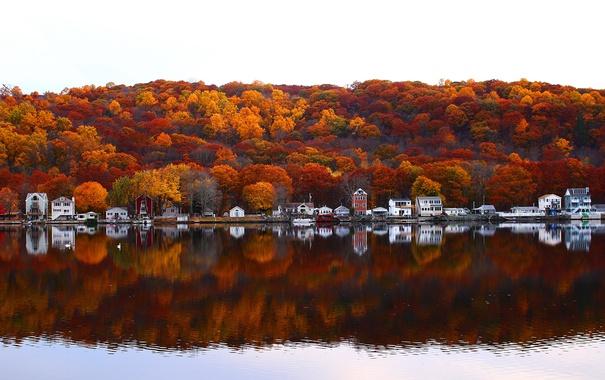 Фото обои осень, река, дома