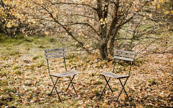 Фото обои осень, листья, стулья